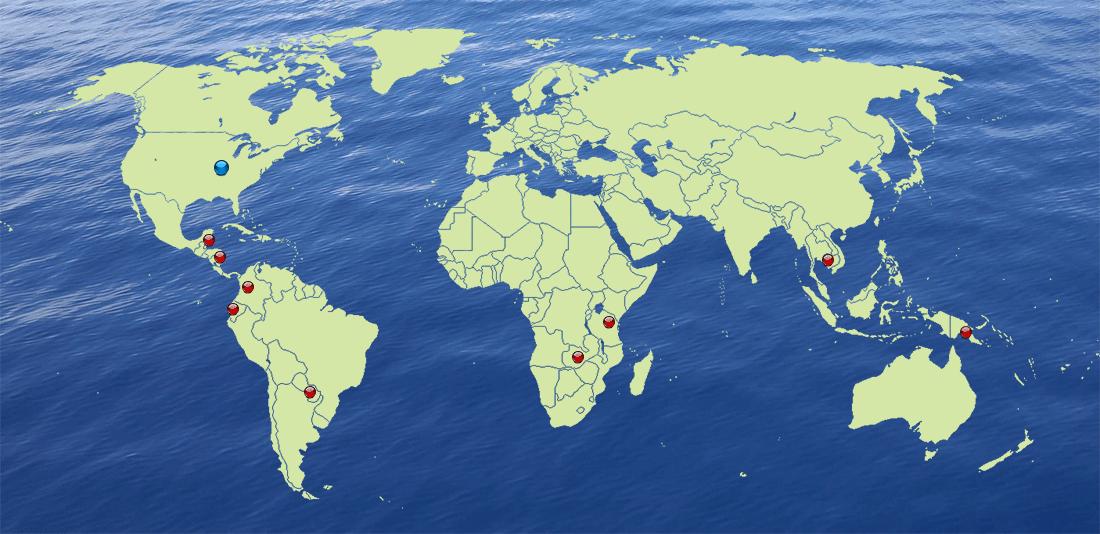 global_map_2020-02